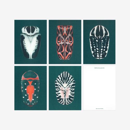 green scarab beetle postcards